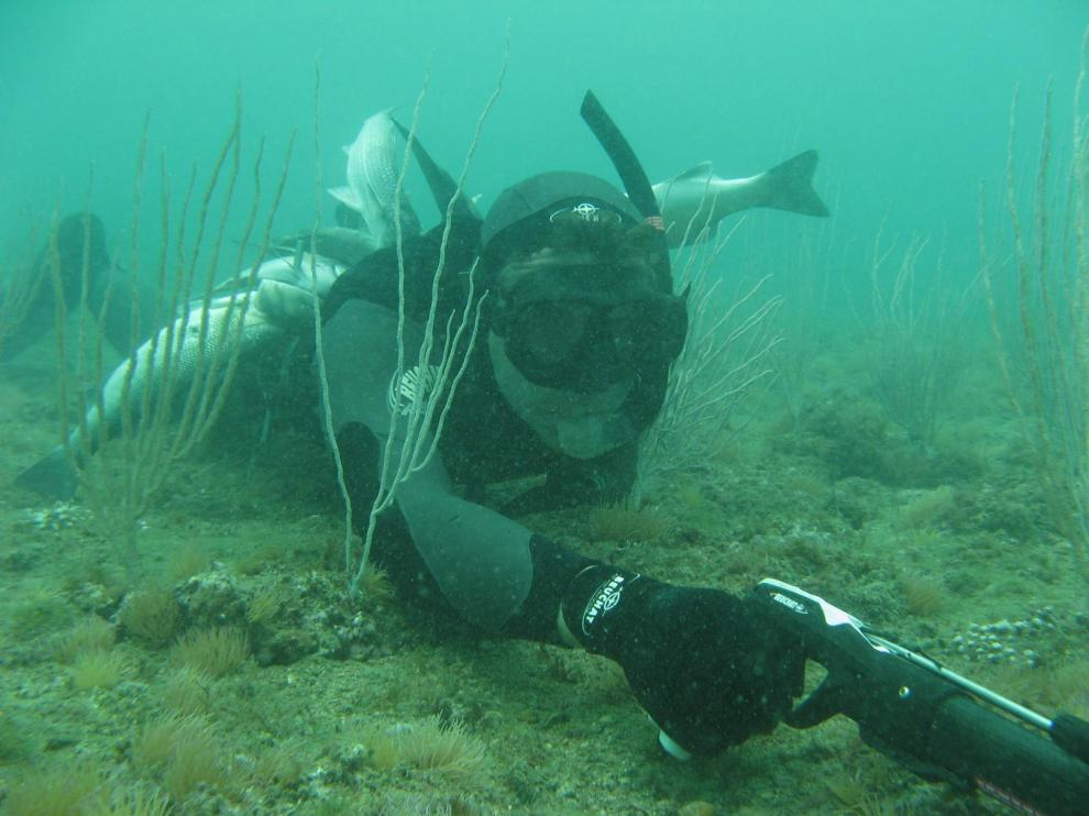 site chasse sous marine