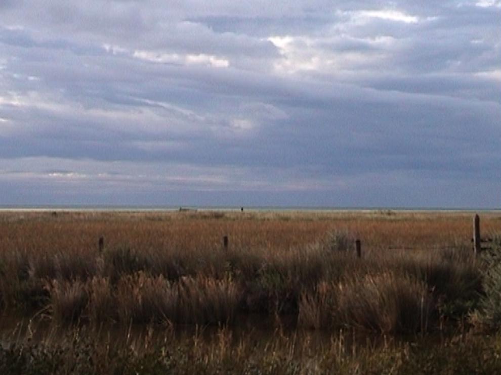 Paysage automnal : un ciel nuageux au-dessus d'un champ aux couleurs jaunes orangées