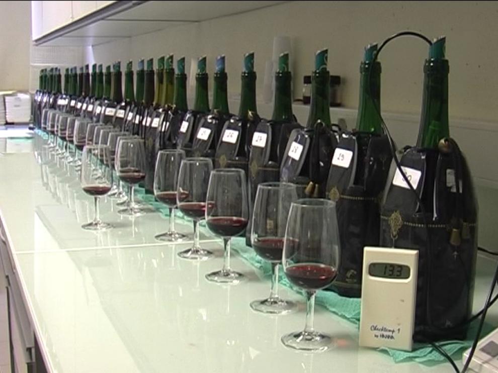 36 bouteilles de vin reliées à un thermomètre