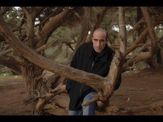 Homme assis dans un arbre aux branches tortueuses
