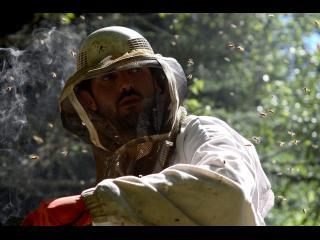 Portrait d'un homme en tenue d'apiculteur