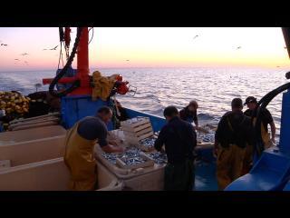 Photo du film Paysans de la mer. Paraules de pescadors