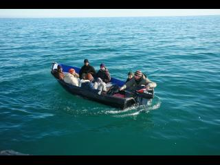 Six hommes et une femmes, sur un bateau à moteur, dans une mer azur