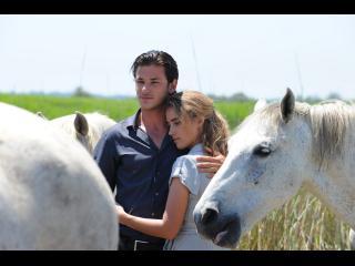 Un couple enlacé dans un champ, entouré de chevaux blancs
