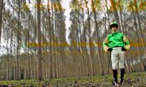 Jockey marchant dans une forêt