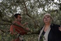 Les Oliviers - © Ecce Films